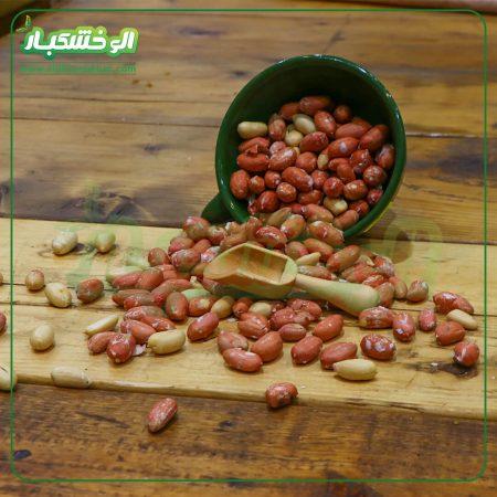 بادوم زمینی شور