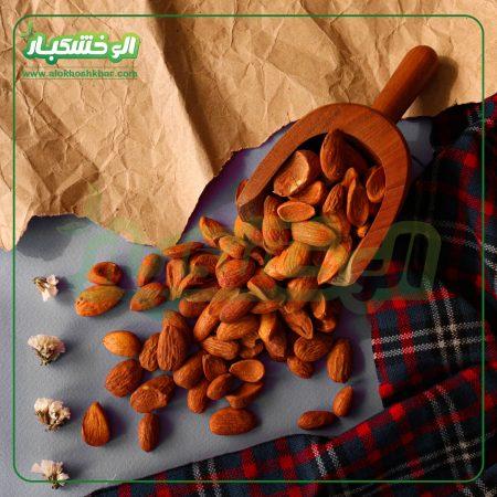 بادوم درختی ایرانی
